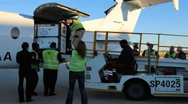 Air Partner, the global aviation services group, was recently called upon to assist in the successful relocation of a lion on behalf of the Born Free Foundation.